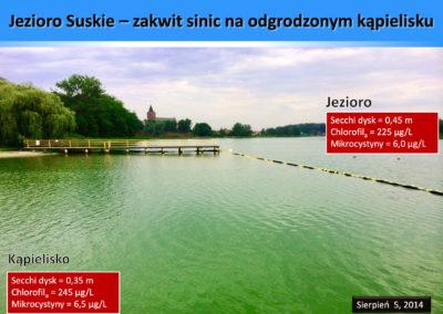 Suskie-1